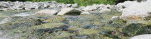 川の水面を撮影したスライド